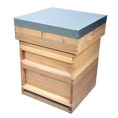 National Hive