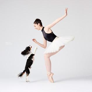 SKYPE Special: Dancers & Dogs Gives 'Photo Op' a Different Meaning