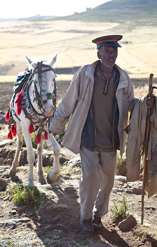 Ethiopian old highlander man walking his horse, on the mountain near Lalibela