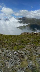 Bale mountain mist
