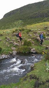 Bale Mountan NP