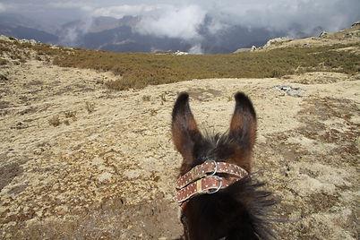 Ethiopia horse riding tour