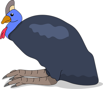 My Pet Cassowary.png