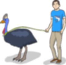 Aidan Moston My Pet Cassowary.png