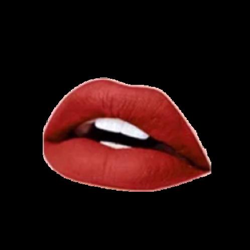 """""""Cinnamon Spice"""" - Matte Liquid Lipstick"""