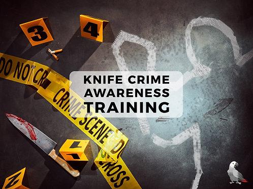 Knife Crime Awareness - e-Learning
