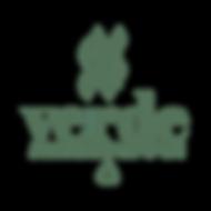 logo verde.png