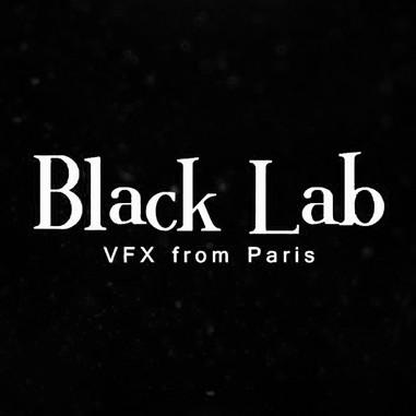 Black Lab.jpg