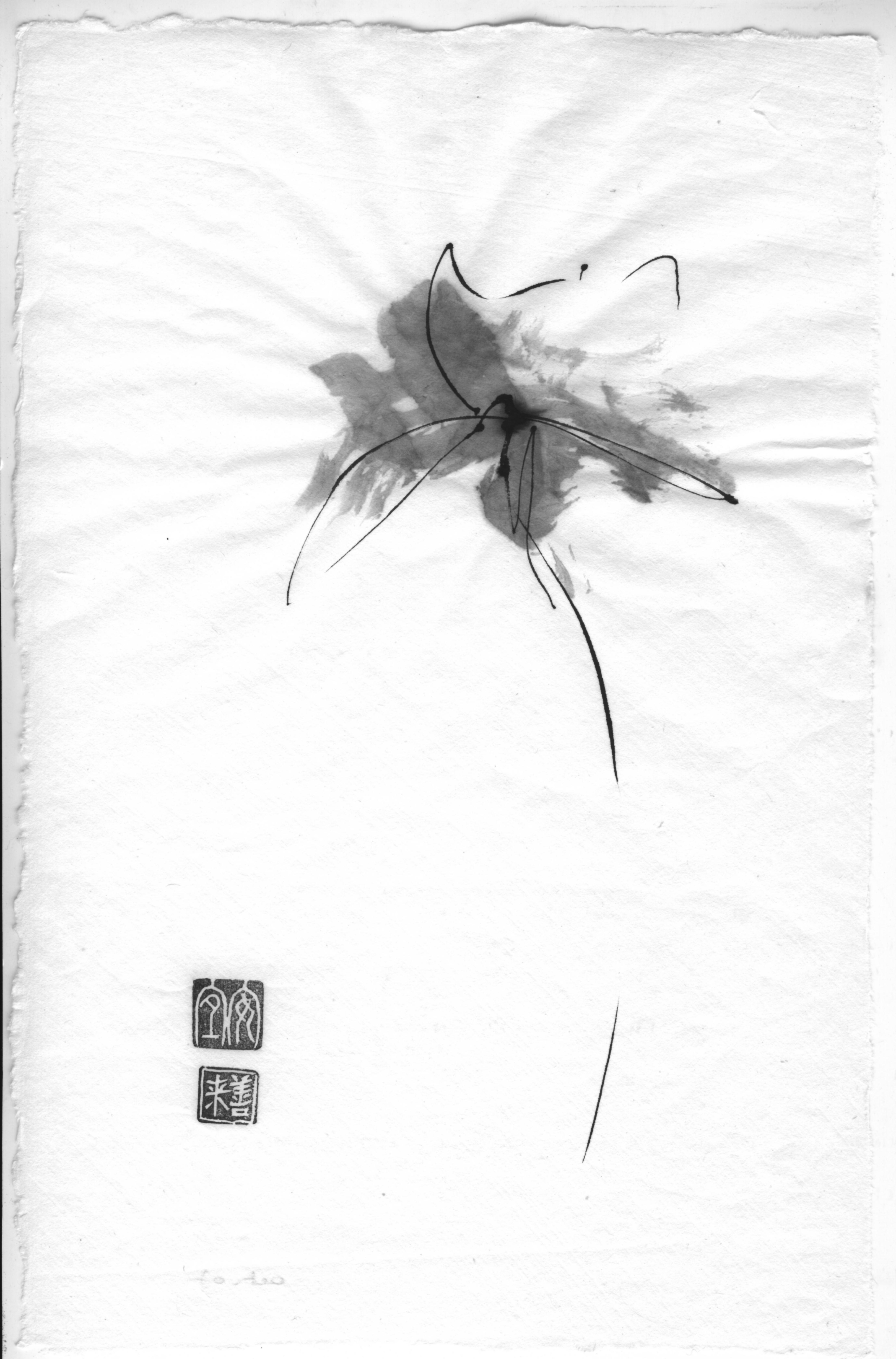fleur  encres