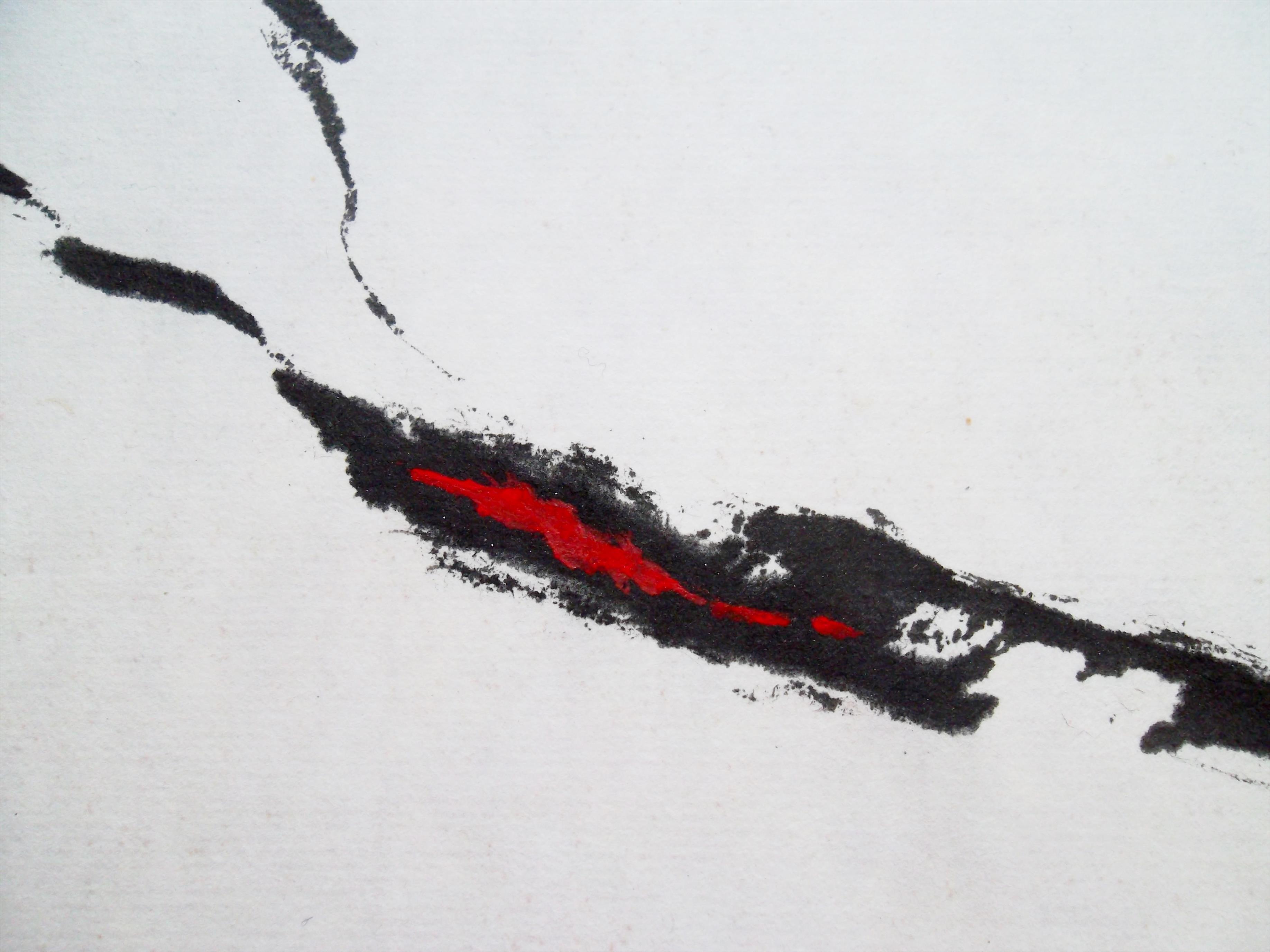 détail  encre et pigments