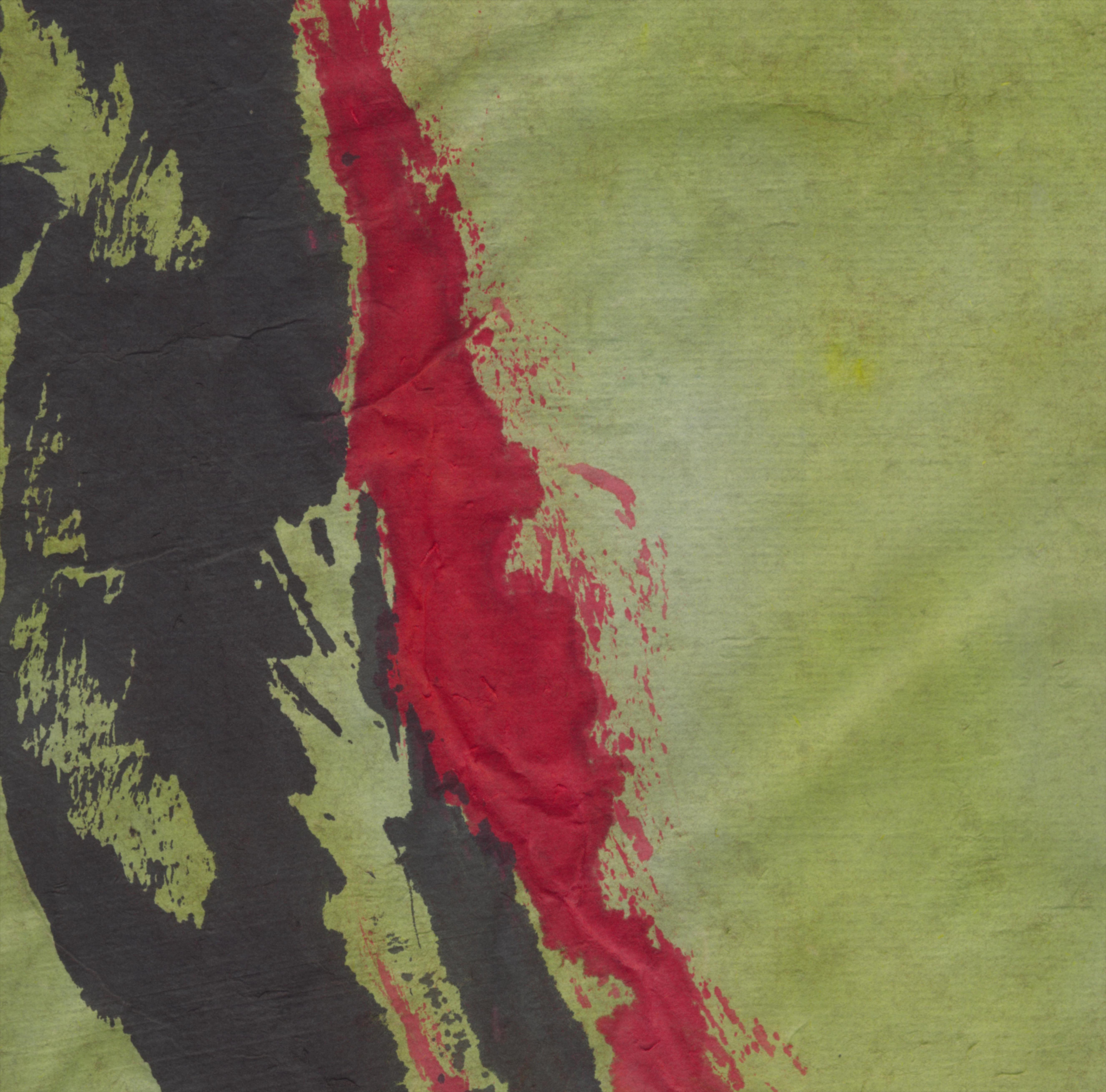 détail  pigments naturels/encre
