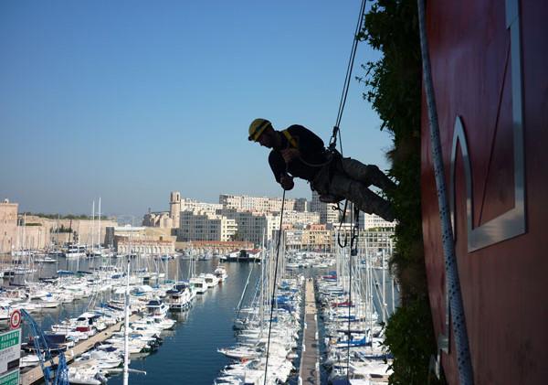 Green Up Marseille Vieux Port Mur végétal
