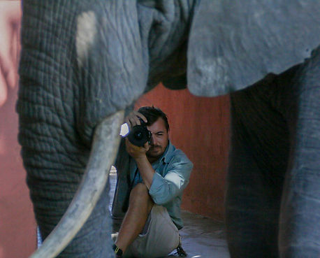 The founder photographing an elephant bull in Tanzania