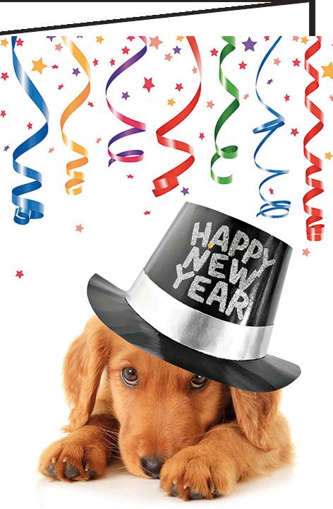 "Nieuwjaarsbrief A5 - ""Hondje New Year"" (10 stuks)"