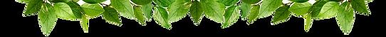 website banner home.png