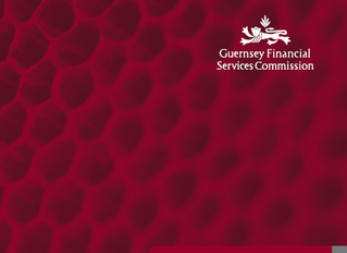 A Guide to Financial Services Regulation - issued by the Commission