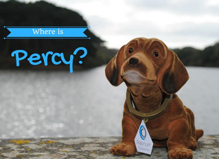 Final Week - Where was Percy's favourite location this week?