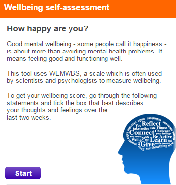 wellbeing self-audit.png