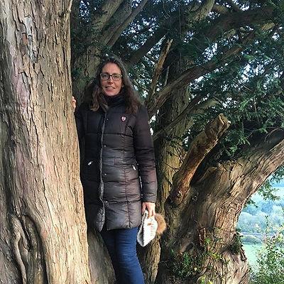 meike in the tree.jpg