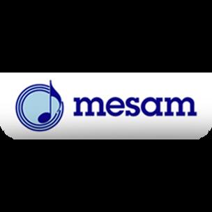 Mesam Logo.png