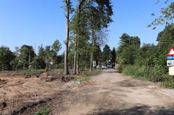 Aout 2020, Deforestation Dreve St Michel
