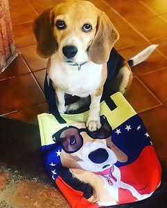 SketchPup! Beagle dog art tote bag