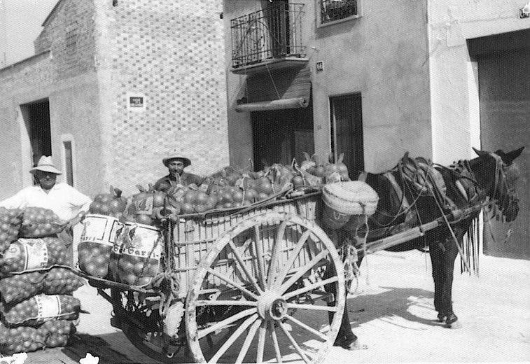 Carro caballo.jpg