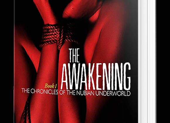 El Despertar (Inframundo de Nubia # 1)