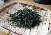 茶摘み-09.jpg