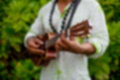 hawaii wedding music