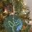 Thumbnail: Plant Ornament