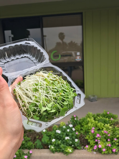 Clamshell of cut microgreens