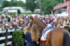 Marit Sveaas minneløp, galopp, øvrevoll galopp, hest, hester, ridning