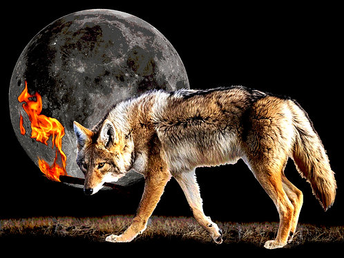 "COYOTE THE FIRE THIEF (PRINT) 8""x10"""