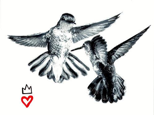 GREYSCALE HUMMINGBIRD STENCIL (PRINT)