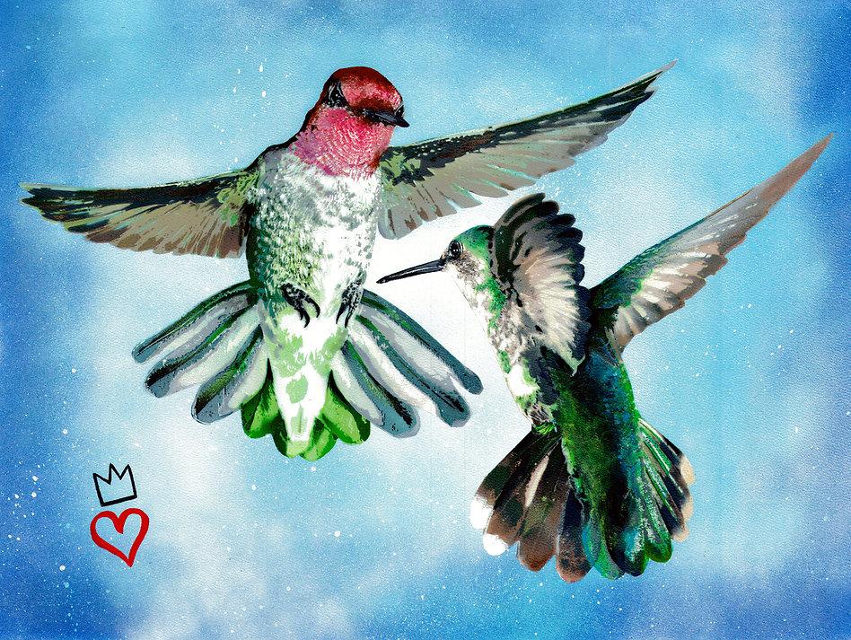 hummingbirdcolor.jpg