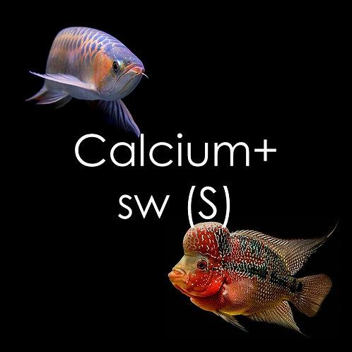 Calcium+ Superworms - 150g
