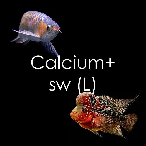 Calcium+ Superworms - 500g