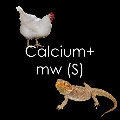 Calcium+ Mealworms - 150g