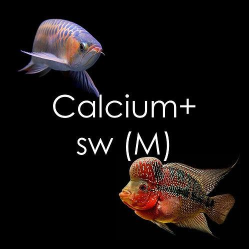 Calcium+ Superworms - 250g