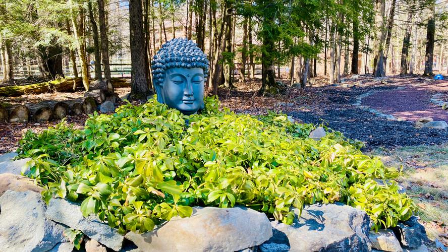Lake House - Buddha - 1.jpeg