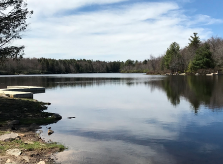 A Trip to Lake Naomi in Pocono Pines, PA: Your Itinerary
