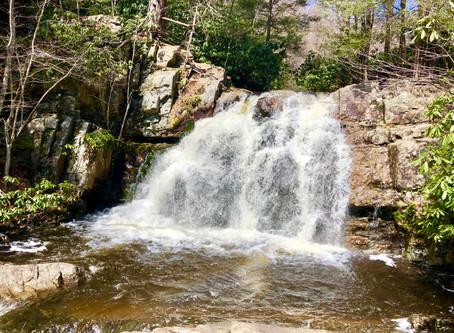 HIKING - Hawk Falls Trail