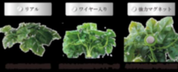 pitatto_products02