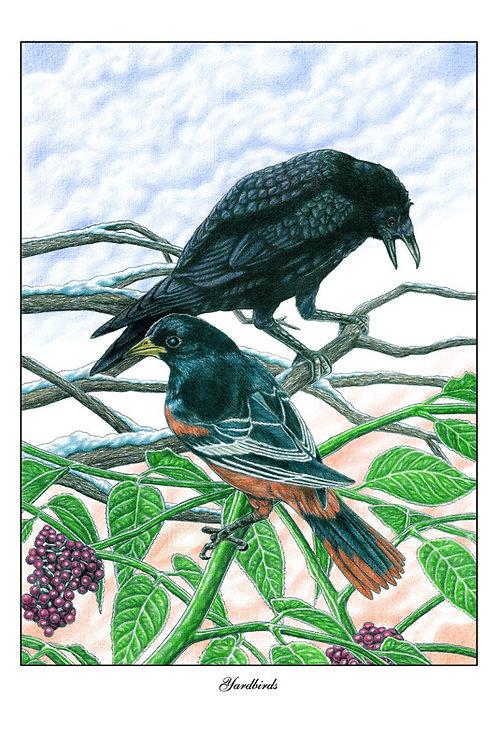 """""""Yardbirds"""" by Jonathan Brown"""