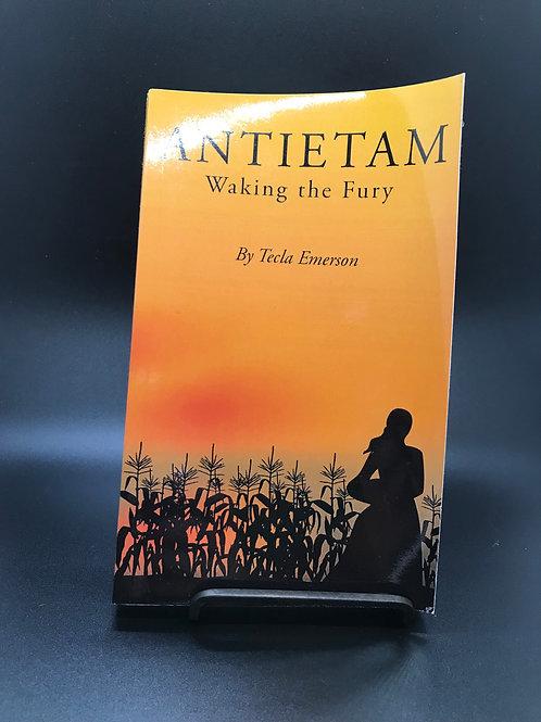 Antietam, waking the fury