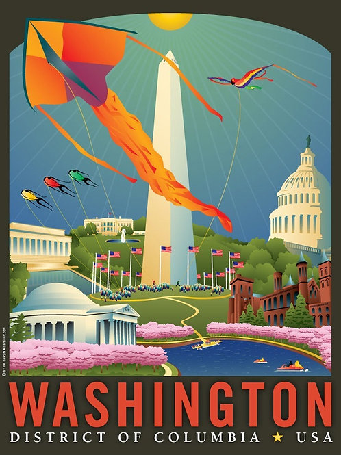 Washington DC: Springtime Art Print