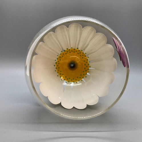 Wine Glass / Water Goblet White Daisy