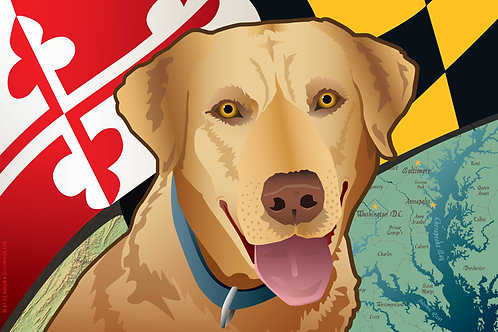 Maryland Yellow Lab Art Print