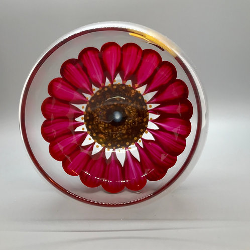 Wine Glass / Water Goblet Gerber Daisy Red